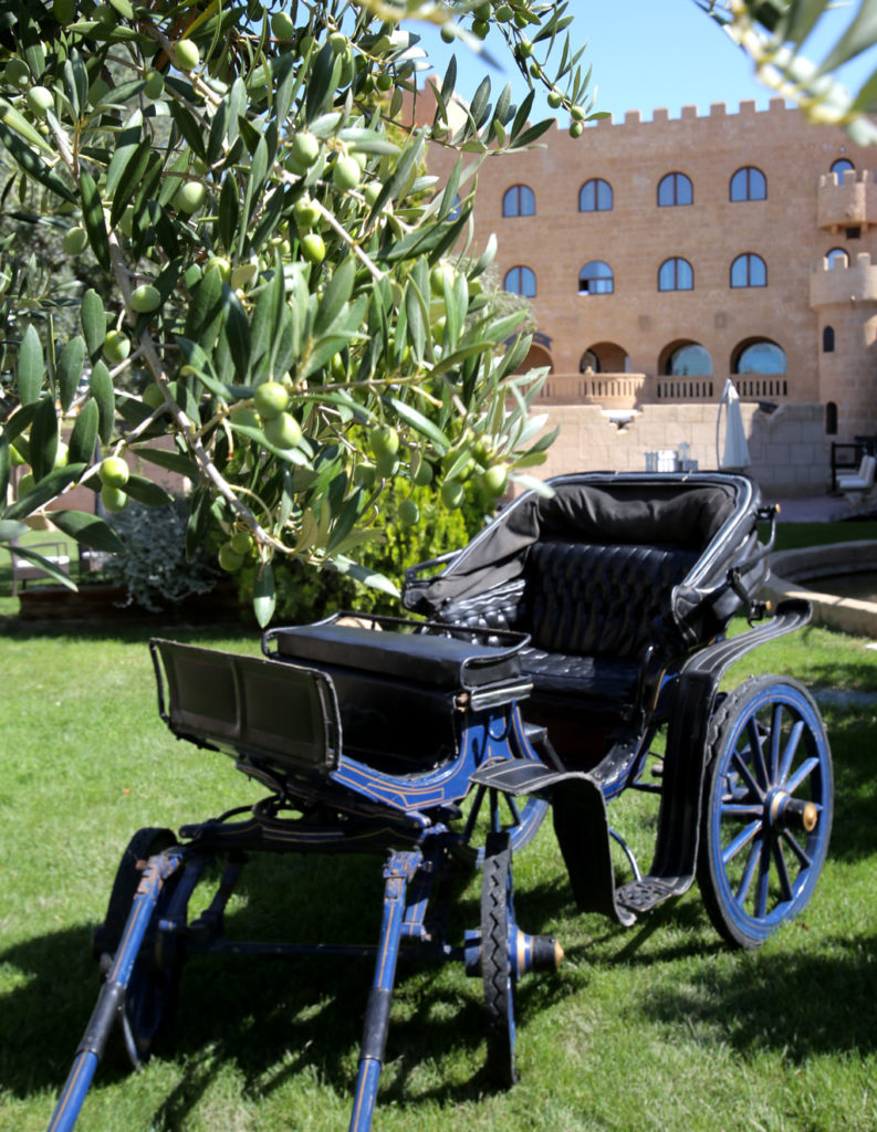 Carruaje y jardines de la Finca de la Reina. Hotel Castillo Bonavia