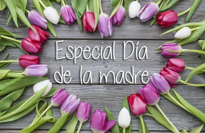 Especial-dia-de-la-madre_Castillo-Bonavia