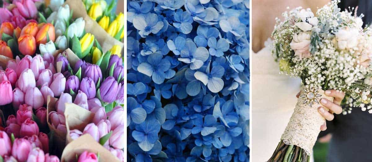 elegir-flores-decorar-bodas