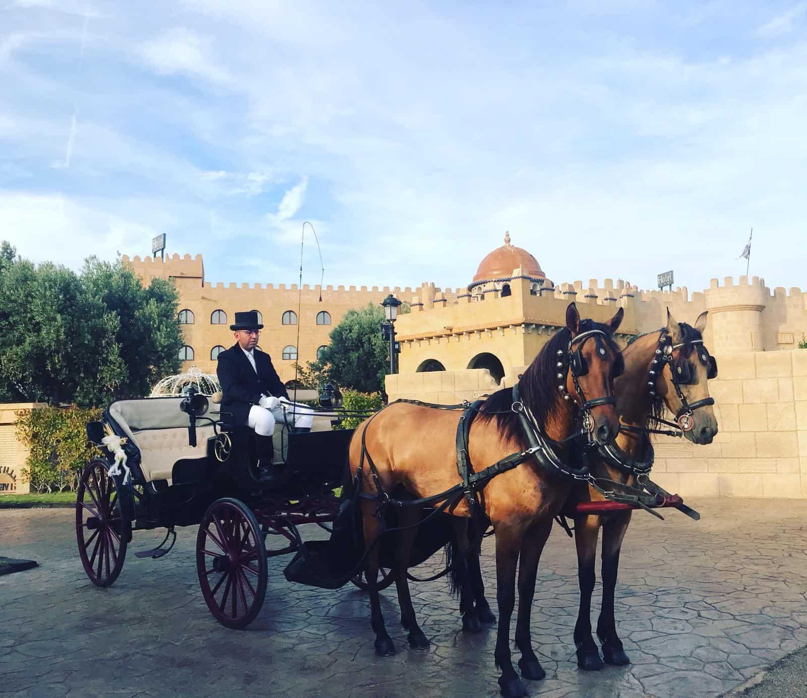 la llegada de los novios en carruaje de caballos