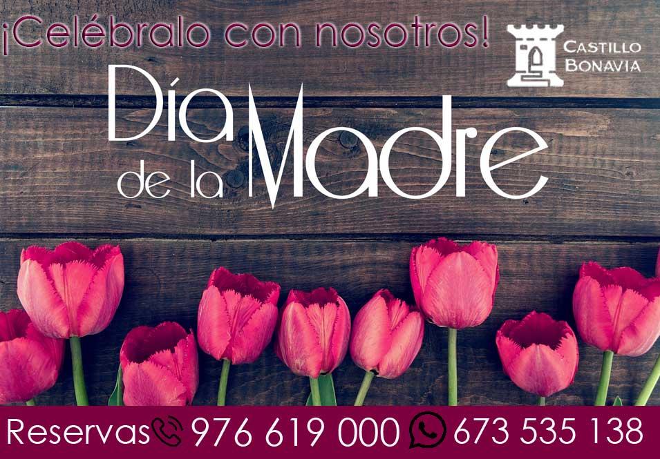 Celebra el Día de la madre en Castillo Bonavía-Zaragoza